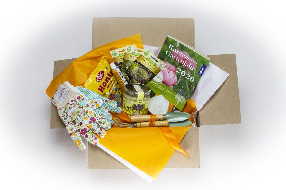 Die grüne Box